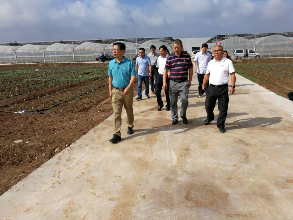 沈建新副院长赴盐城开展农业科技帮扶工作对接调研