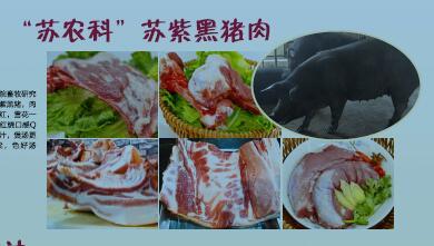 苏紫黑猪肉